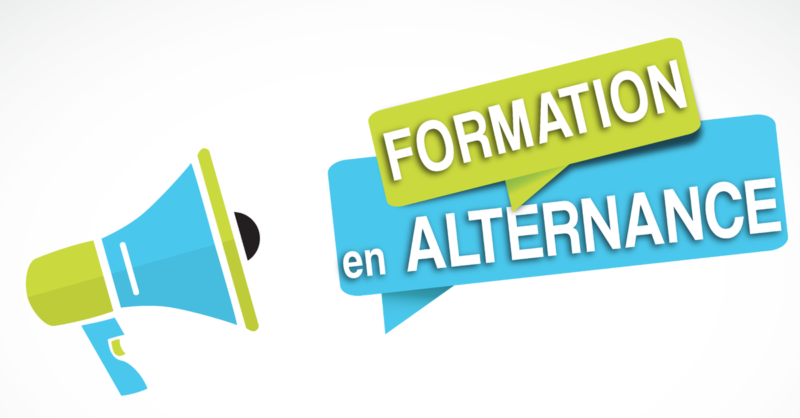 UFR SEG_formations alternance